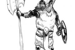 hippie-viking